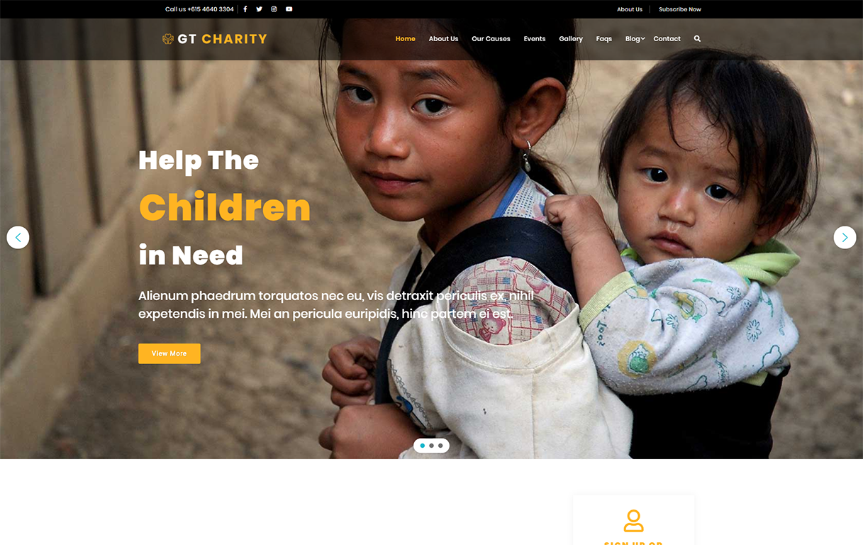 gt-charity-wordpress-theme
